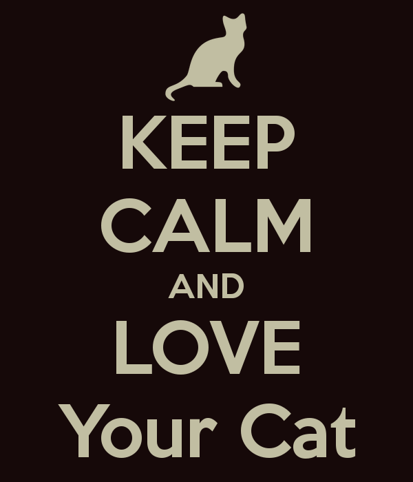 keep-calm-and-love-your-cat