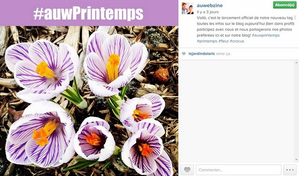 tag-instagram-auprintemps-auwebzine
