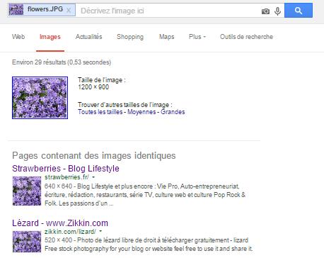 resultats-recherche-photos-google-zikkin-com