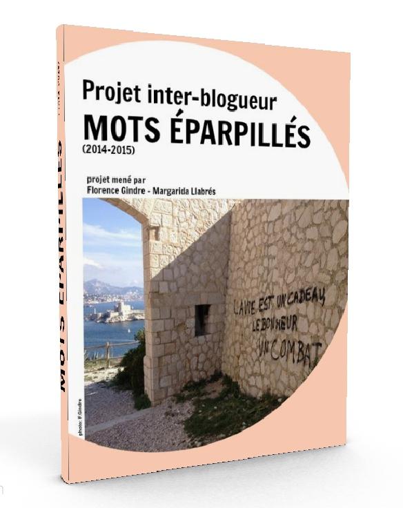 couv-3d-ebook-mots-eparpilles
