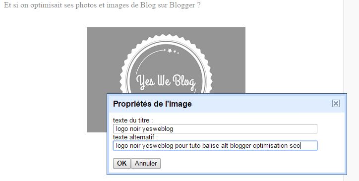 balise-alt-photo-image-blogger