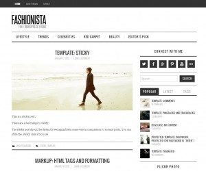 fashionista free theme wordpress