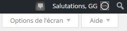 options-ecran-wordpress