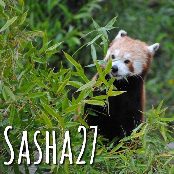 sasha27