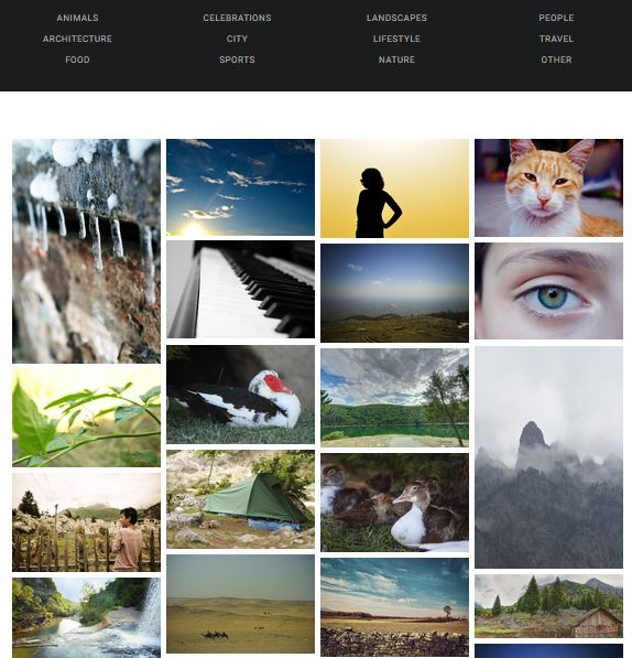 largephotos-free-stock-photos