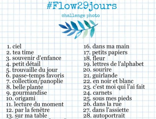 flow-29-jours-challenge-photo-une