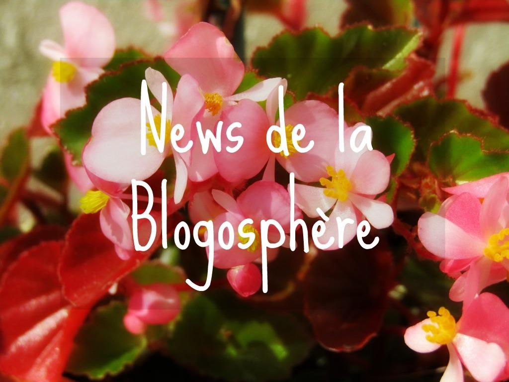 morning-flowers-news-blogo-yesweblog-1024x768