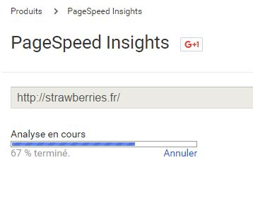 test-pagespeed