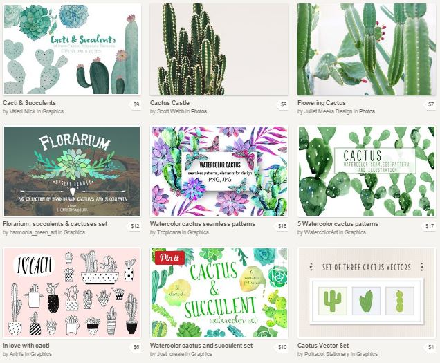 cactus-resources-creative-market