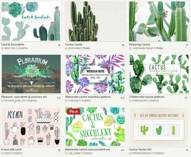 cactus-resources-creative-market