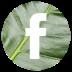 facebook-icon-72x72