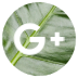 google-plus-icon-72x72
