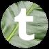 tumblr-icon-72x72