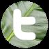 twitter-bis-icon-72x72