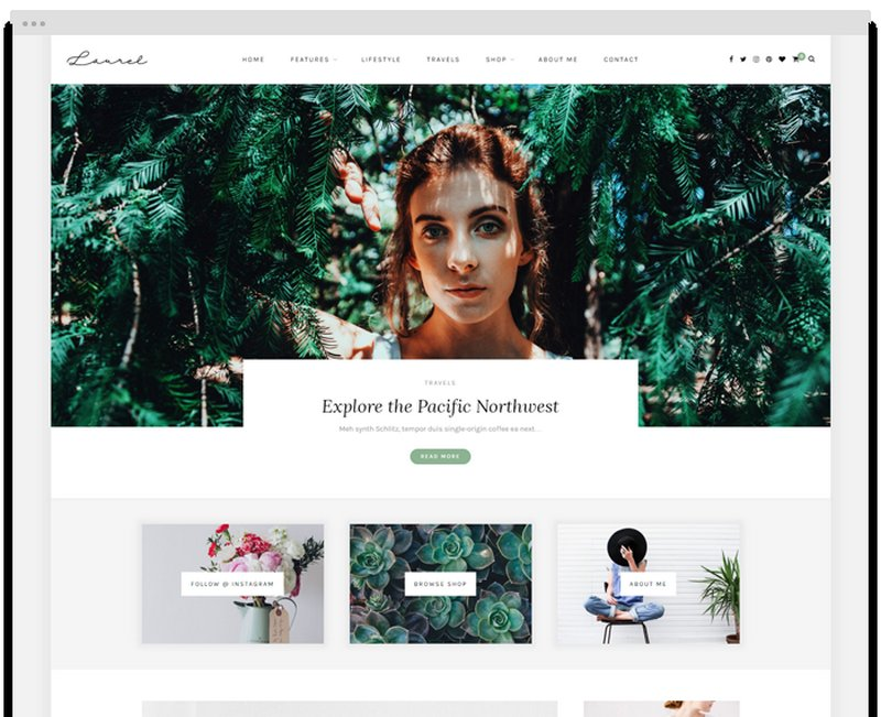 laurel-theme-wordpress-solopine