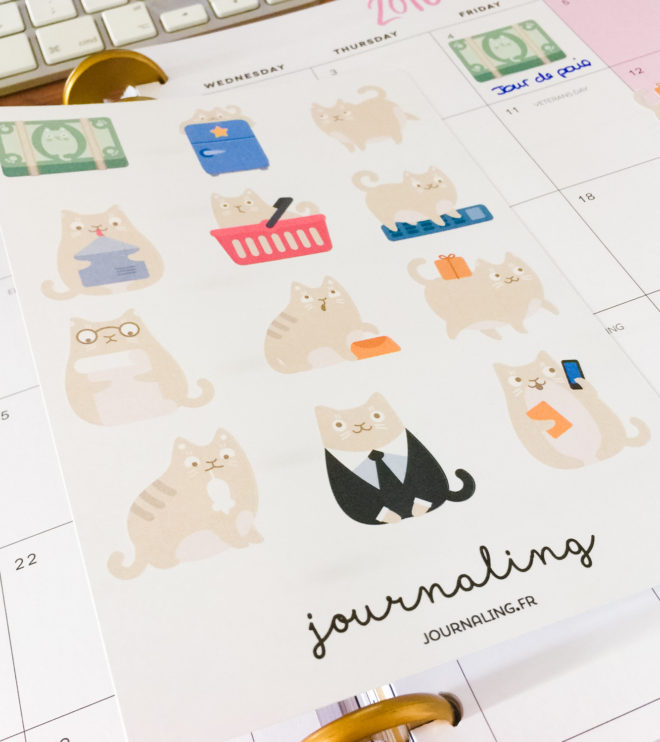 http://journaling.fr/boutique/stickers-planner-chat-beige/