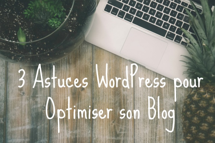 3 astuces pour son blog WordPress