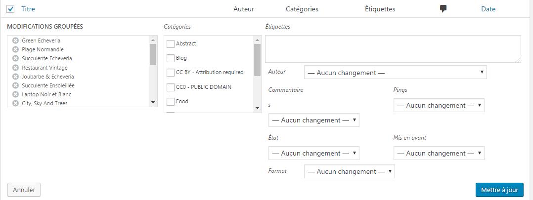 Modifier des articles WP en masse par paquets