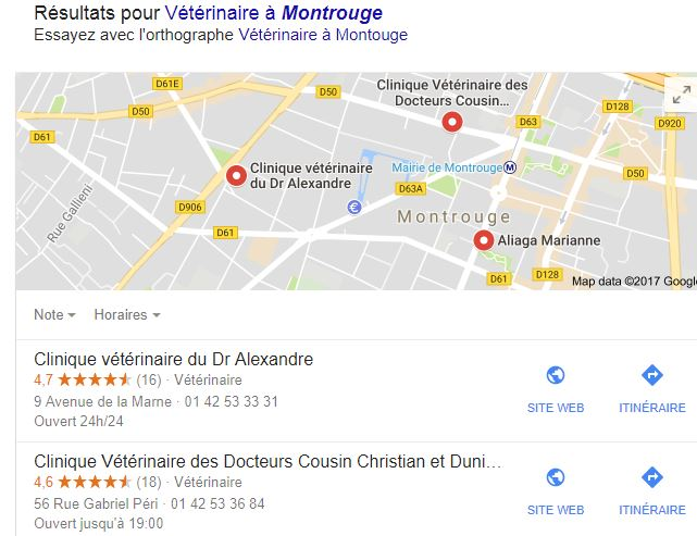 Exemple Fiches établissements Google my Business