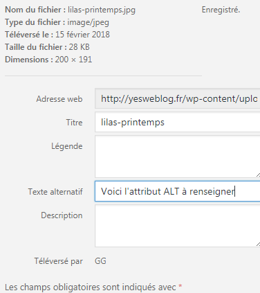 Attribut Alt texte alternatif sur WordPress