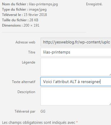 Attribut Alt texte alternatif sur WordPress