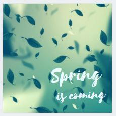 Spring is coming Animation Crello