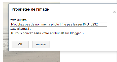 Texte alternatif sur Blogger