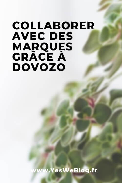 Collaborer avec des marques grâce à Dovozo - YWB