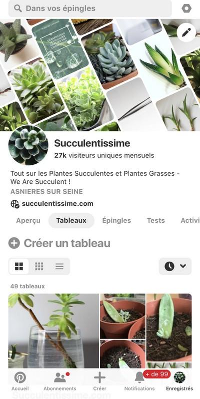 Page de compte Pinterest sur iPhone