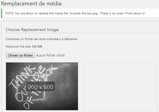 Enable media replace plugin page