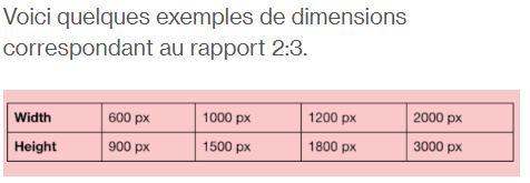 Exemples de dimensions au rapport 2 sur 3 pour Pinterest