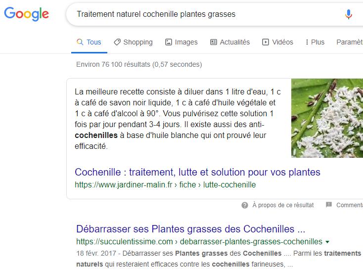 requete traitement naturel cochenille plantes grasses