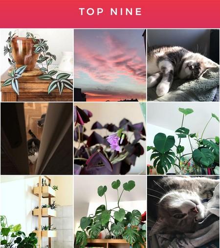 bestnine2019 instagram