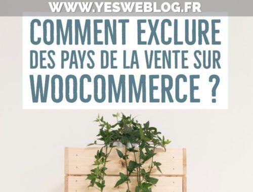 Exclure des pays ou departements de la vente sur woocommerce