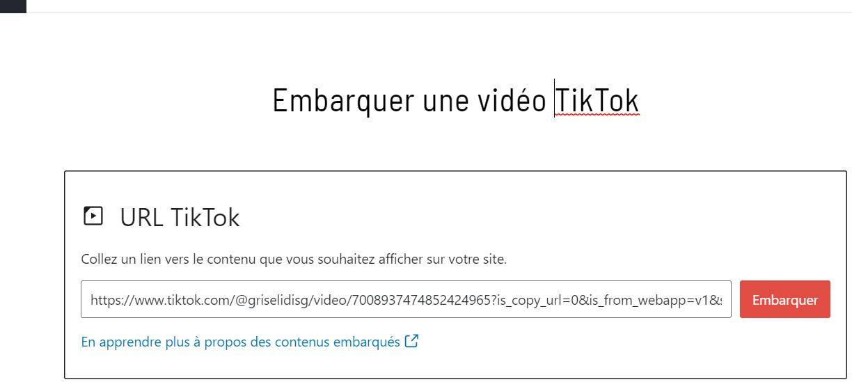 coller url video tiktok bloc wp editeur