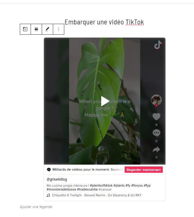 video tiktok embarquee dans editeur wp